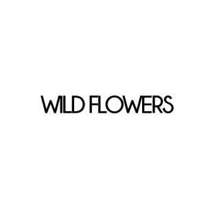 logo-wf-500x500